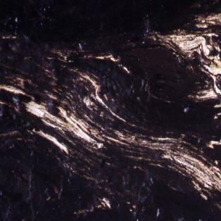the black paintings
